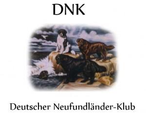 Geronimo-Links-DNK