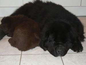 Mack & Eros (1)